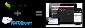 20130705-salesforce-mobile-platform.png